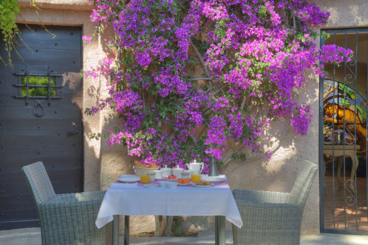 Breakfast_patio_bougainvillee_french_riviera