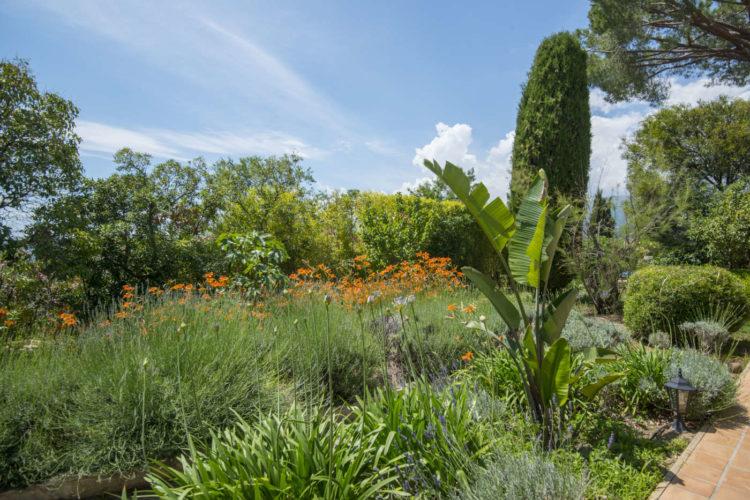Jardin_fleuri provence chambres_hotes